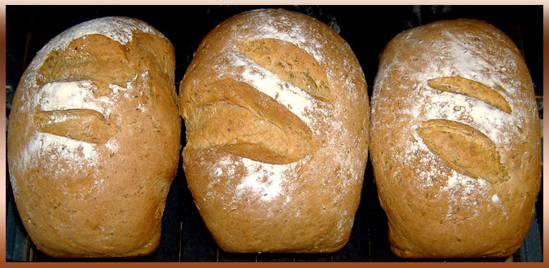 Three Loaves of Stoneground Whole Wheat